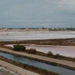 Aigues Mortes e l'inaspettata biodiversità delle saline