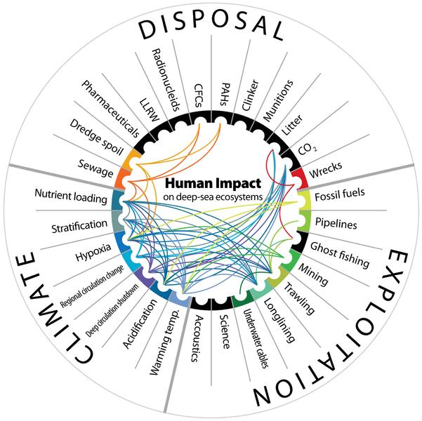 Human_impact_on_deep-sea_ecosystems
