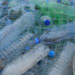 Il flagello dei mari: la plastica
