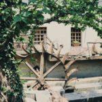 Mulino Day e Mercato Contadino a San Vittore Olona