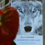 La saggezza dei lupi. La mia vita con il branco - Elli H. Radinger