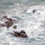 Acidificazione degli oceani: cosa significa?