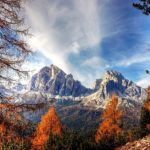 """Le voci della natura raccontate in """"Storie del bosco antico"""""""