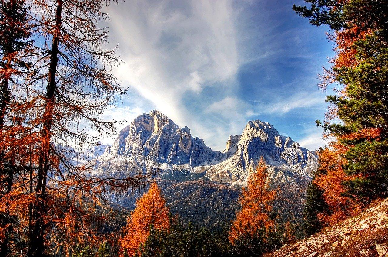Storie del bosco antico Mauro Corona