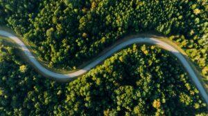 scoperte scientifiche fotosintesi alternativa